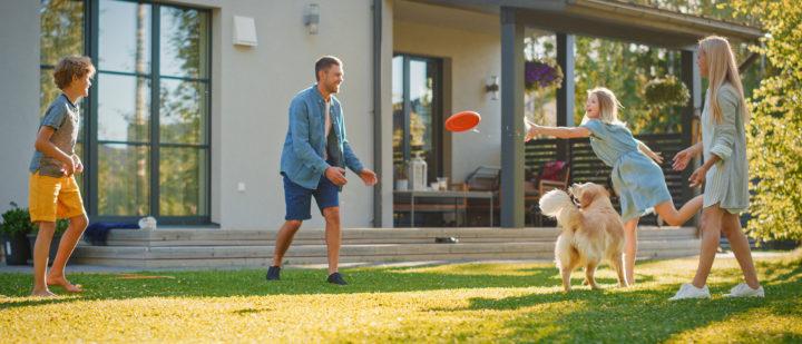 6 myths about pet insurance
